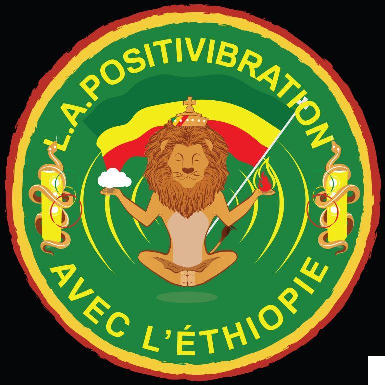 logo association positivibration lovinsky graphiste webdesigner nantes 44
